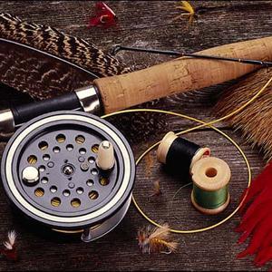 Охотничьи и рыболовные магазины Горьковского